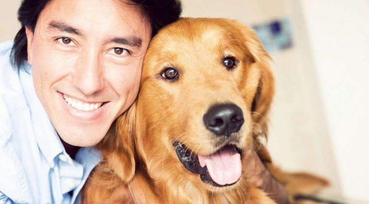 Arthritis and Joint Pain in Dogs